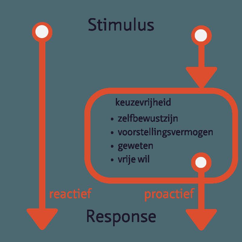Stimulus respons reactief vs proactief