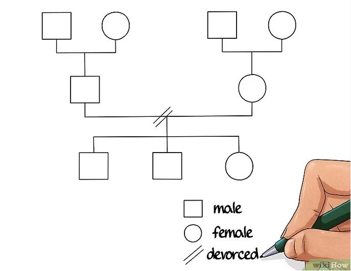 simpel genogram